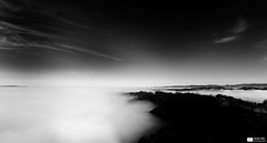 Sea of Fog (Daniel Wildi Photography) Tags: wood sea sky blackandwhite bw sun mist tower fog clouds forest tv 2011 cantonbern seaoffog bantiger danielwildiphotography