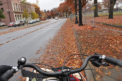 Leaves in bike lane on Naito
