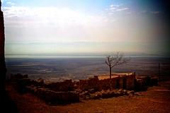 Masada (Katya_N) Tags: travel tree canon israel nationalpark ruins view desert 7d masada deadsea