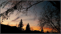 Soothing Sunset (LostMyHeadache: Absolutely Free *) Tags: trees houses winter light sunset shadow sky nature leaves clouds twilight nikon glow zoom dusk branches silhouettes davidsmith calgaryalbertacanada