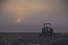 Down On The Farm (Glenn Anderson.) Tags: tractor clouds sunrise soil international shadpws a850 heavyfog